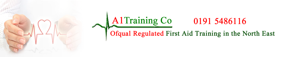 A1 Training Co